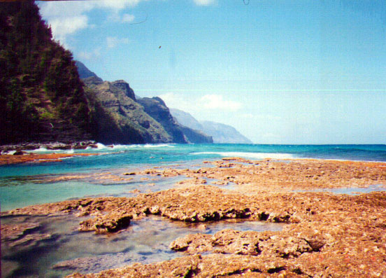 reef at Ke'e and Na Pali, North Shore of Kauai
